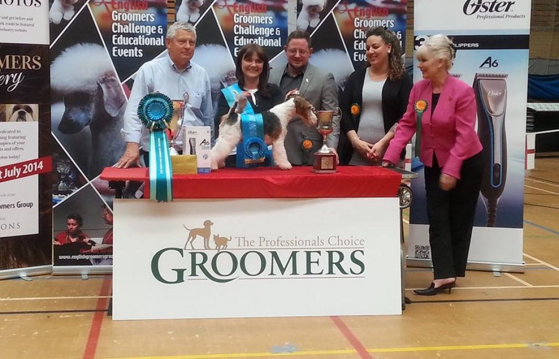 dog groomer surrey competition winner award