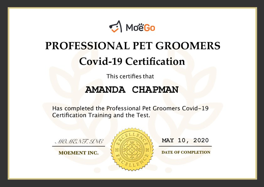MoeGo Covid-19 Certificate